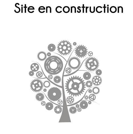 FCI Site en construction